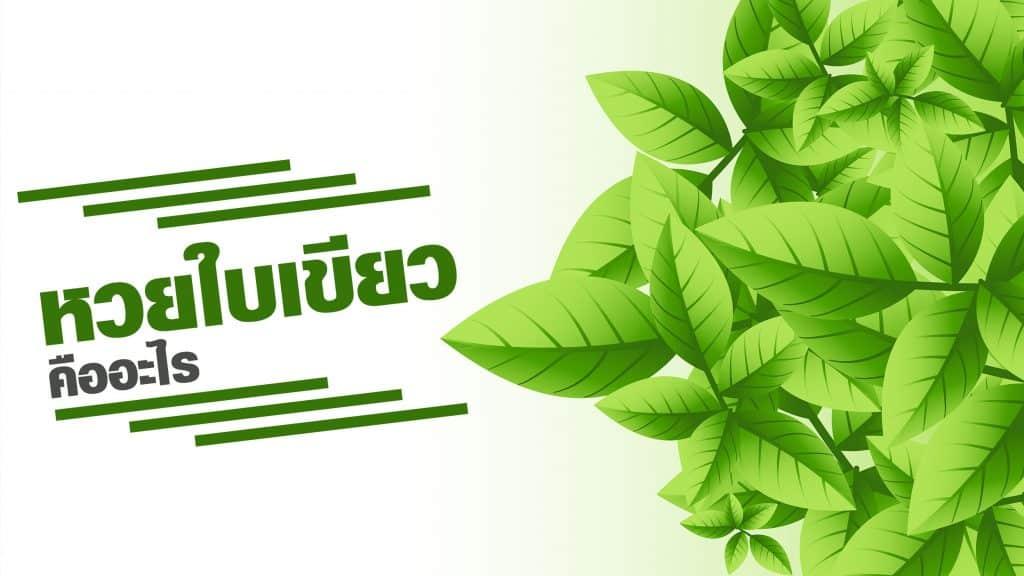 หวยใบเขียว คืออะไร